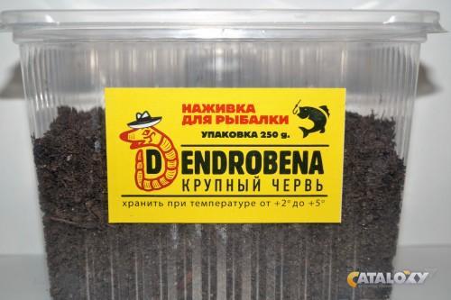 черви дендробена для рыбалки купить в москве