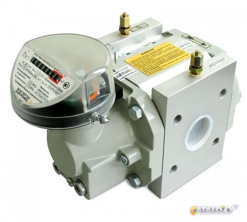 газовый счетчик RVG g250